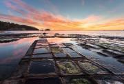 塔斯马尼亚 精华3日游 霍巴特+布鲁尼岛吃生蚝看白袋鼠+亚瑟港4大奇观+塔斯曼半岛+里奇蒙小镇+惠灵顿山