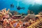 凯恩斯 道格拉斯港精品深入4日游(全程4星酒店+库兰达热带雨林+阿金考特礁+丹翠雨林+阿凡达莫斯曼峡谷 明星四哩海滩)