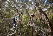 墨尔本周边 莫宁顿半岛 奇幻探险乐园 魔法迷宫花园 空中飞人 丛林探险 树上冲浪 The Enchanted Maze Garden