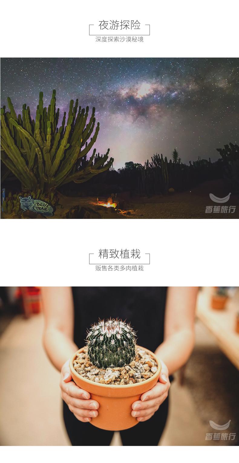 BananaTravel仙人掌王國_03
